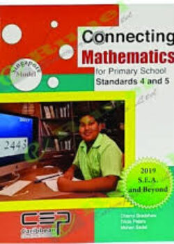Connecting mathematics std 4 and 5